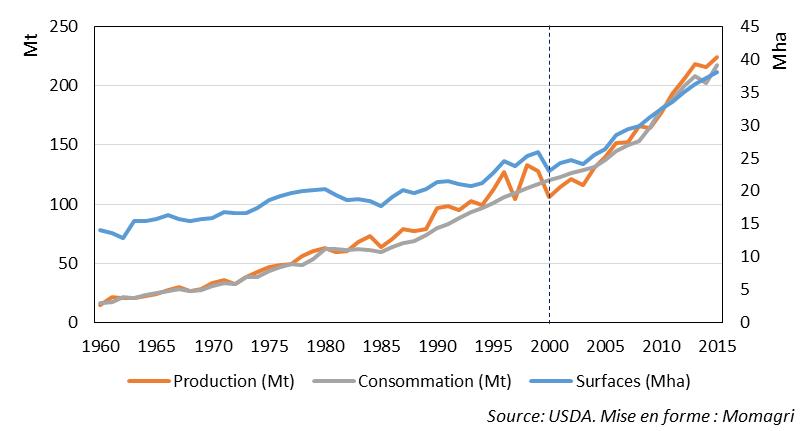 Figure 1 : Surface, production, consommation de maïs en Chine
