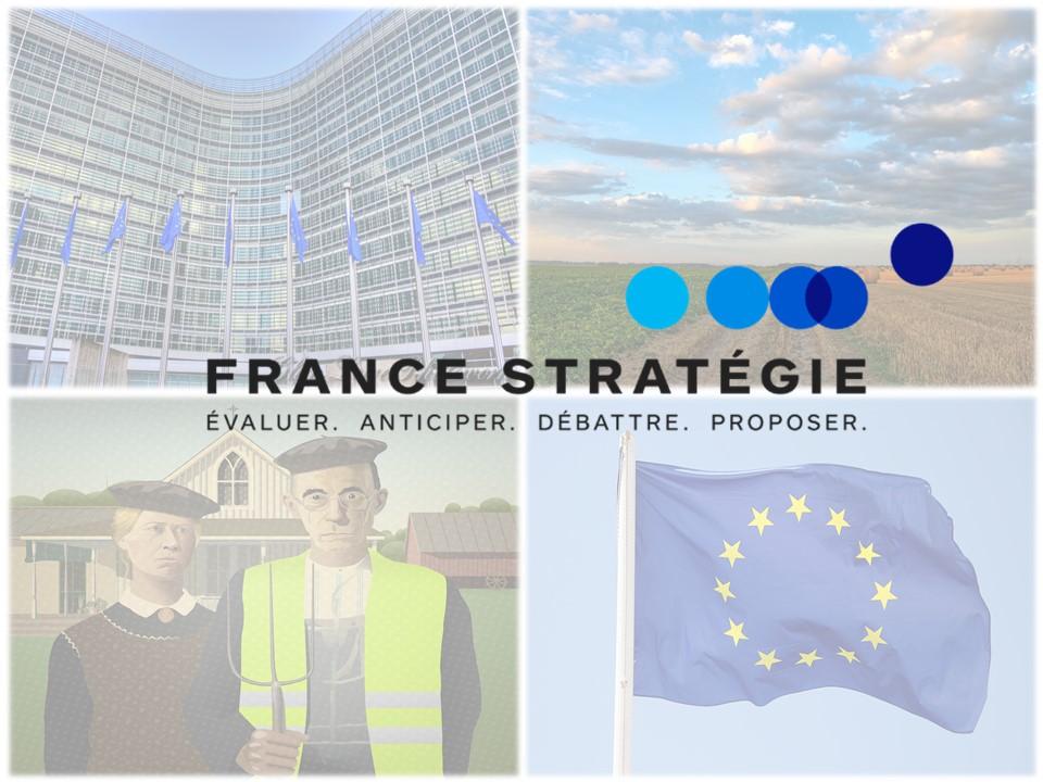 Article France Stratégie Illustration agriculture gilet jaune europe