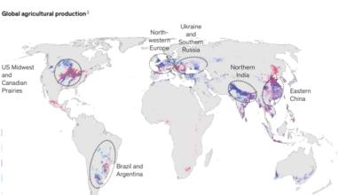 Les principales régions productrices de grains présentées dans le rapport McKinsey